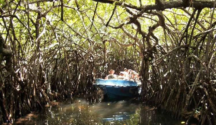 Madu River Safari Bugget Pack